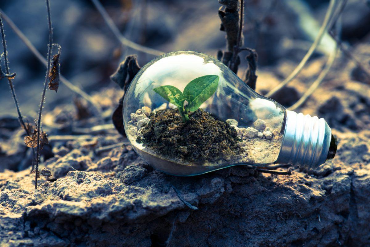 Megoldás-e a környezeti válságokra az e-mobilitás?